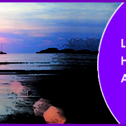 Law of Attraction – Holistic Healing for Abundance