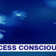What are access consciousness bars?